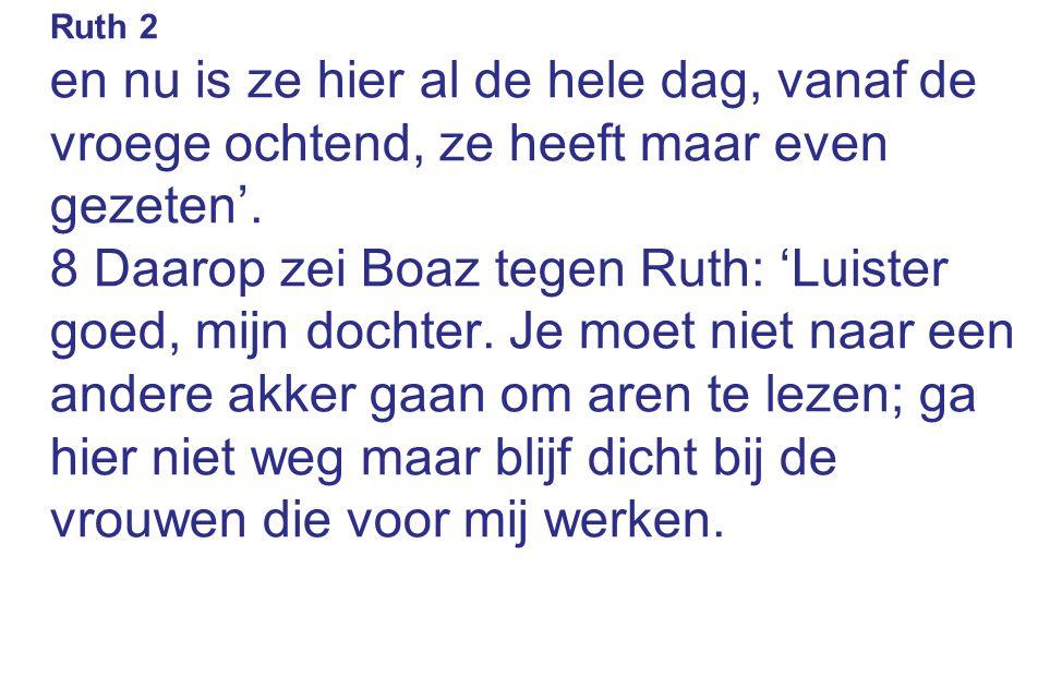 Ruth 2 en nu is ze hier al de hele dag, vanaf de vroege ochtend, ze heeft maar even gezeten'. 8 Daarop zei Boaz tegen Ruth: 'Luister goed, mijn dochte