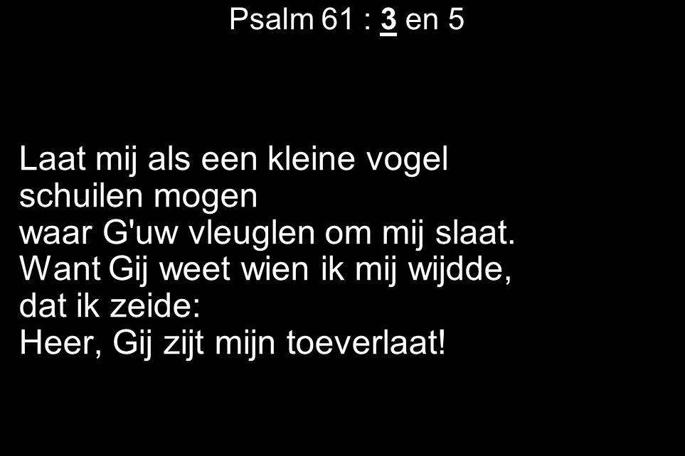 Psalm 61 : 3 en 5 Laat mij als een kleine vogel schuilen mogen waar G'uw vleuglen om mij slaat. Want Gij weet wien ik mij wijdde, dat ik zeide: Heer,