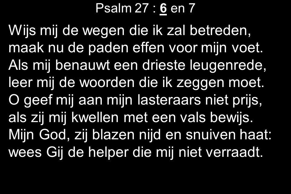 Psalm 27 : 6 en 7 Wijs mij de wegen die ik zal betreden, maak nu de paden effen voor mijn voet.