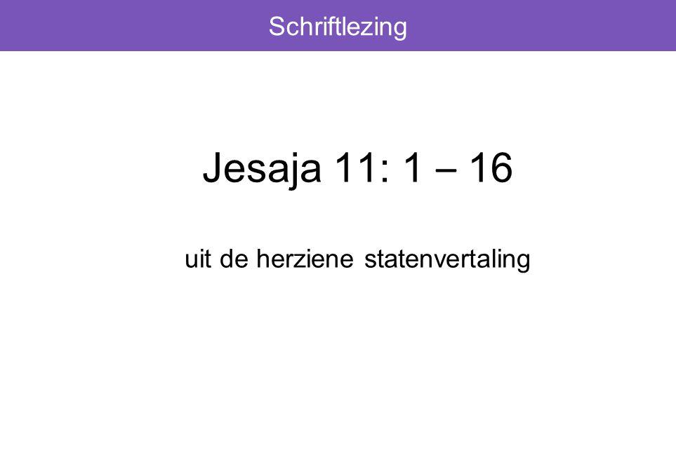 Schriftlezing Jesaja 11: 1 – 16 uit de herziene statenvertaling