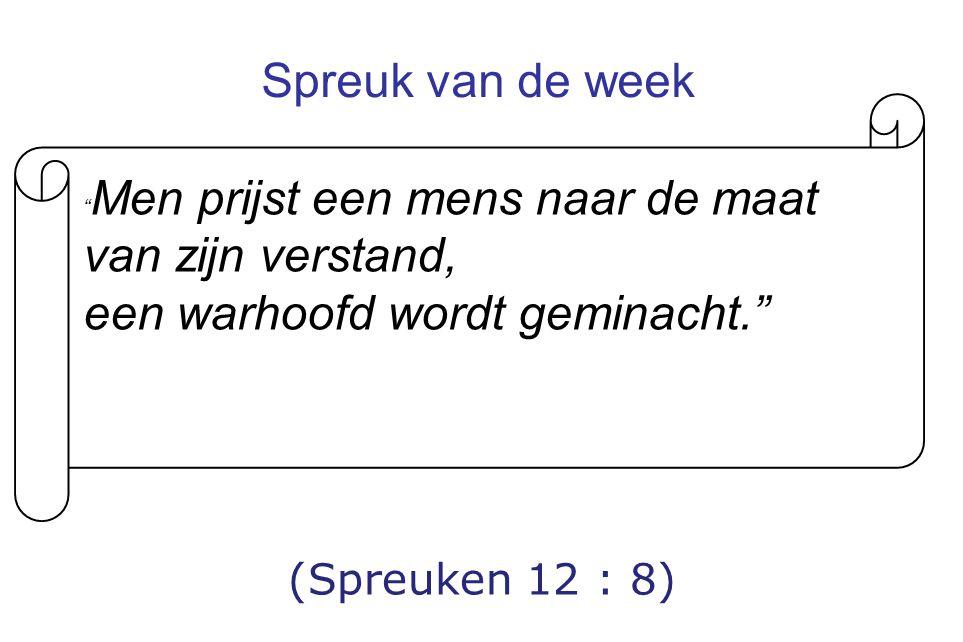 Spreuk van de week (Spreuken 12 : 8) Men prijst een mens naar de maat van zijn verstand, een warhoofd wordt geminacht.