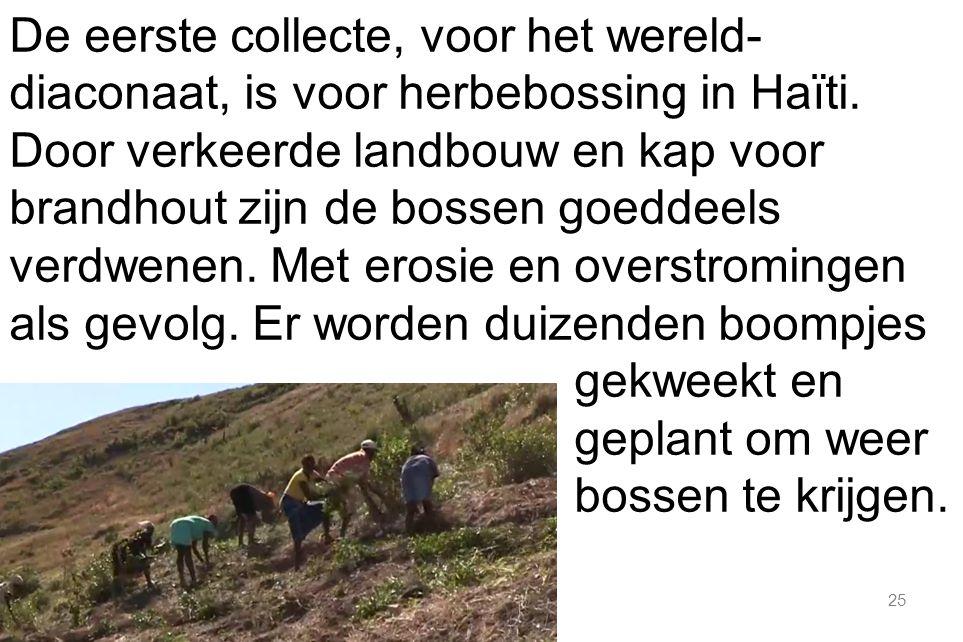 25 De eerste collecte, voor het wereld- diaconaat, is voor herbebossing in Haïti.