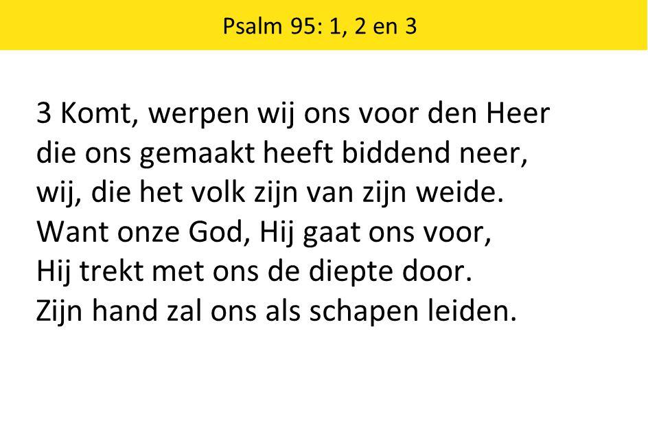 3 Komt, werpen wij ons voor den Heer die ons gemaakt heeft biddend neer, wij, die het volk zijn van zijn weide. Want onze God, Hij gaat ons voor, Hij