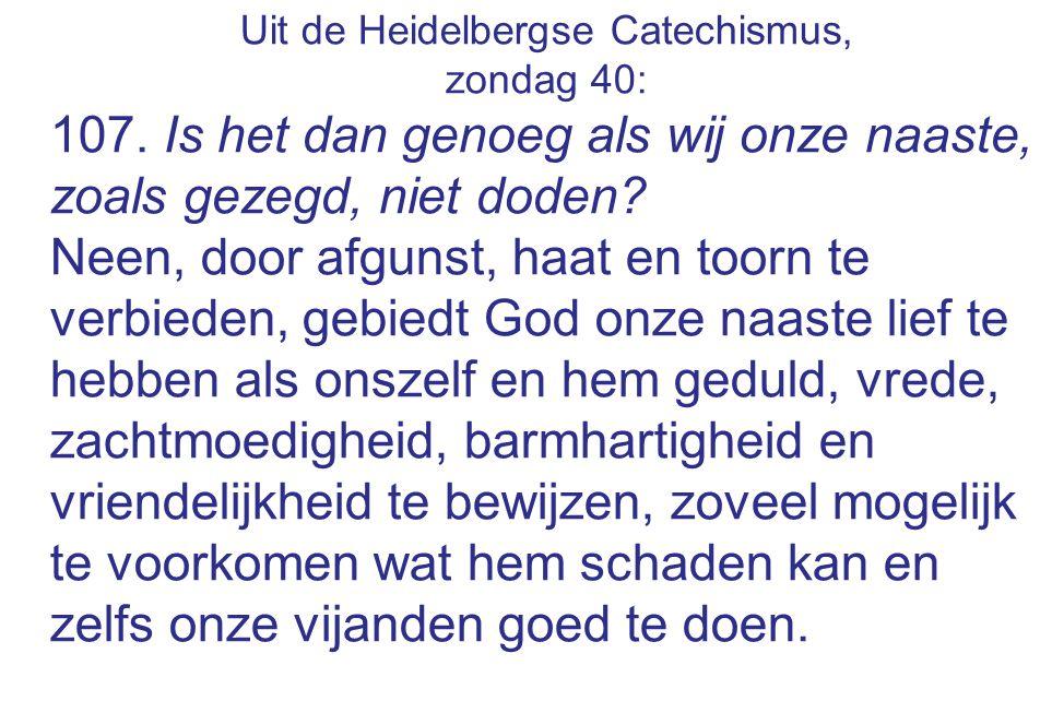 Uit de Heidelbergse Catechismus, zondag 40: 107. Is het dan genoeg als wij onze naaste, zoals gezegd, niet doden? Neen, door afgunst, haat en toorn te