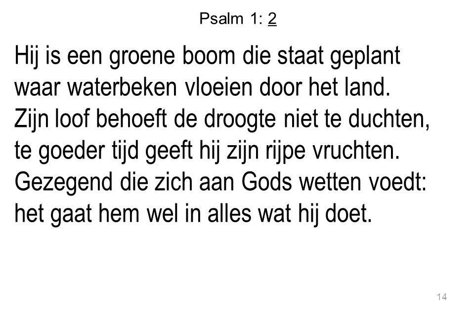 Psalm 1: 2 Hij is een groene boom die staat geplant waar waterbeken vloeien door het land. Zijn loof behoeft de droogte niet te duchten, te goeder tij