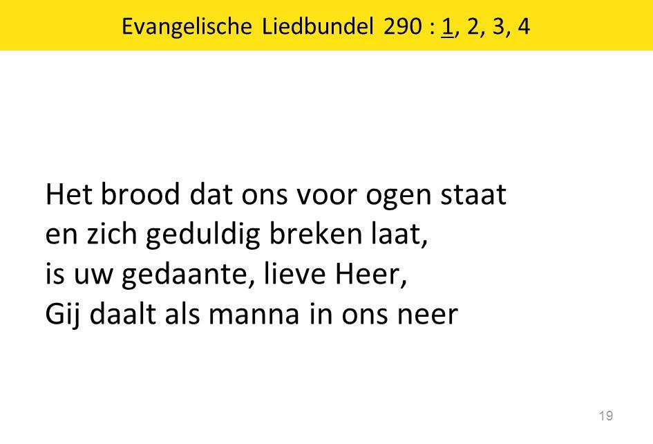 Het brood dat ons voor ogen staat en zich geduldig breken laat, is uw gedaante, lieve Heer, Gij daalt als manna in ons neer 19 Evangelische Liedbundel