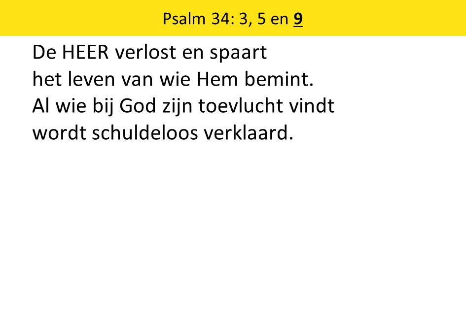 De HEER verlost en spaart het leven van wie Hem bemint. Al wie bij God zijn toevlucht vindt wordt schuldeloos verklaard. Psalm 34: 3, 5 en 9