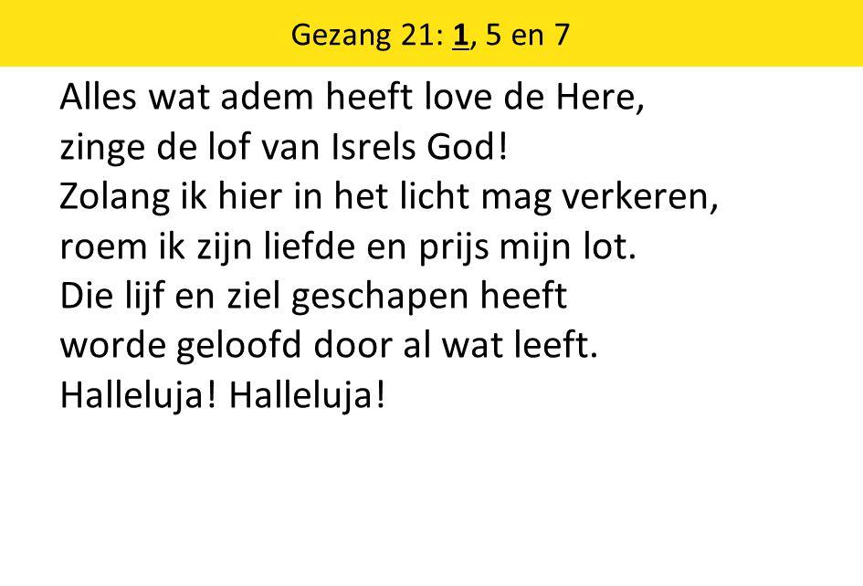 Alles wat adem heeft love de Here, zinge de lof van Isrels God! Zolang ik hier in het licht mag verkeren, roem ik zijn liefde en prijs mijn lot. Die l
