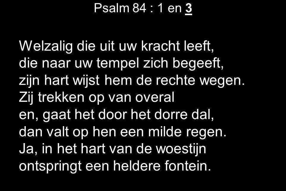 Psalm 84 : 1 en 3 Welzalig die uit uw kracht leeft, die naar uw tempel zich begeeft, zijn hart wijst hem de rechte wegen. Zij trekken op van overal en