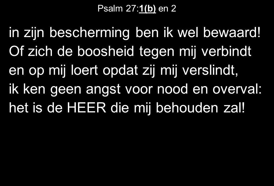 Psalm 27:1(b) en 2 in zijn bescherming ben ik wel bewaard! Of zich de boosheid tegen mij verbindt en op mij loert opdat zij mij verslindt, ik ken geen