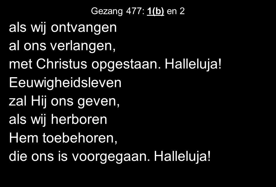 als wij ontvangen al ons verlangen, met Christus opgestaan. Halleluja! Eeuwigheidsleven zal Hij ons geven, als wij herboren Hem toebehoren, die ons is