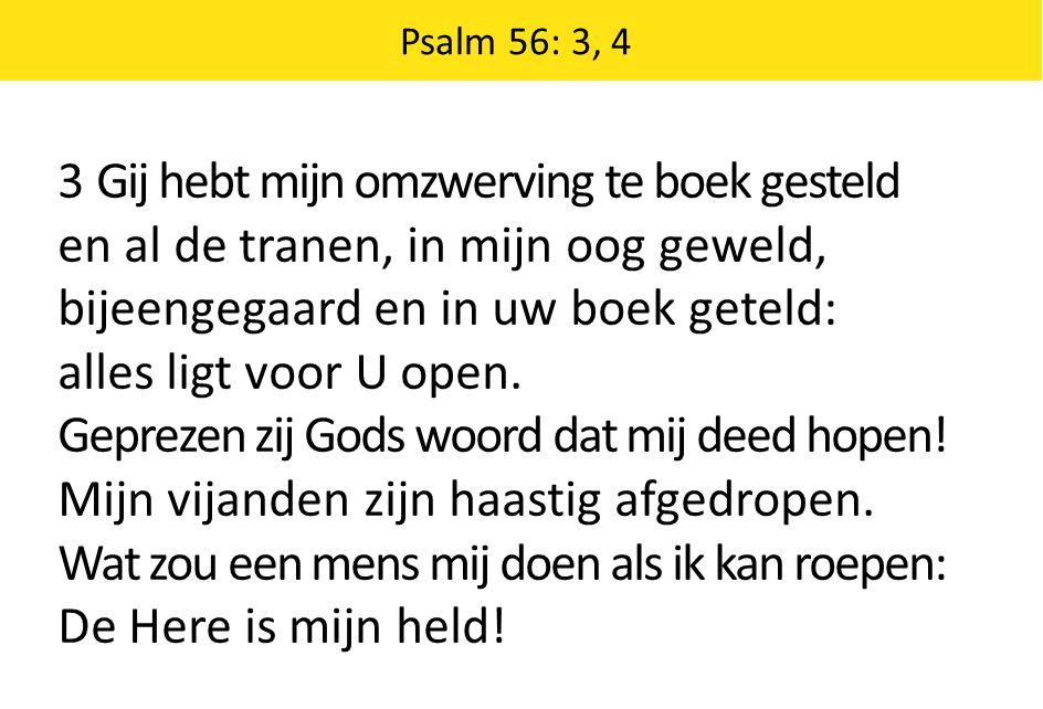 Psalm 56: 3, 4 3 Gij hebt mijn omzwerving te boek gesteld en al de tranen, in mijn oog geweld, bijeengegaard en in uw boek geteld: alles ligt voor U o