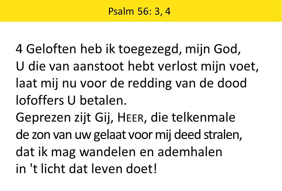 Psalm 56: 3, 4 4 Geloften heb ik toegezegd, mijn God, U die van aanstoot hebt verlost mijn voet, laat mij nu voor de redding van de dood lofoffers U b