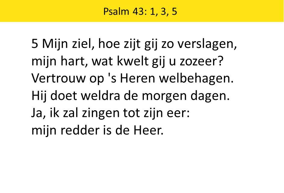 Zingende Gezegend 185 Psalm 43: 1, 3, 5 5 Mijn ziel, hoe zijt gij zo verslagen, mijn hart, wat kwelt gij u zozeer? Vertrouw op 's Heren welbehagen. Hi