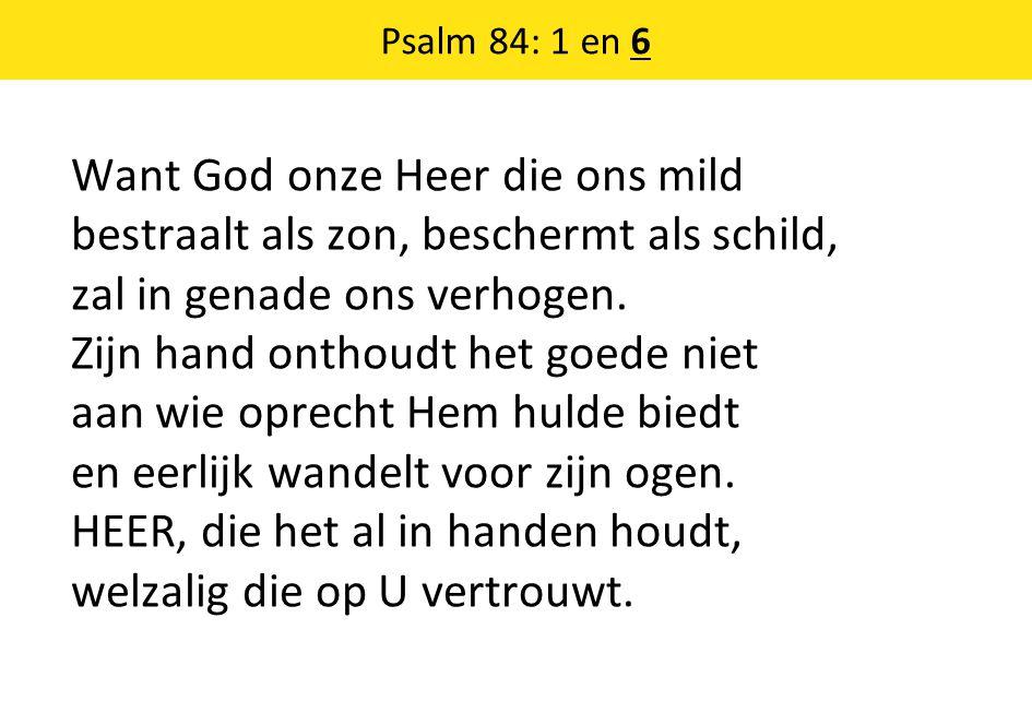 Want God onze Heer die ons mild bestraalt als zon, beschermt als schild, zal in genade ons verhogen. Zijn hand onthoudt het goede niet aan wie oprecht