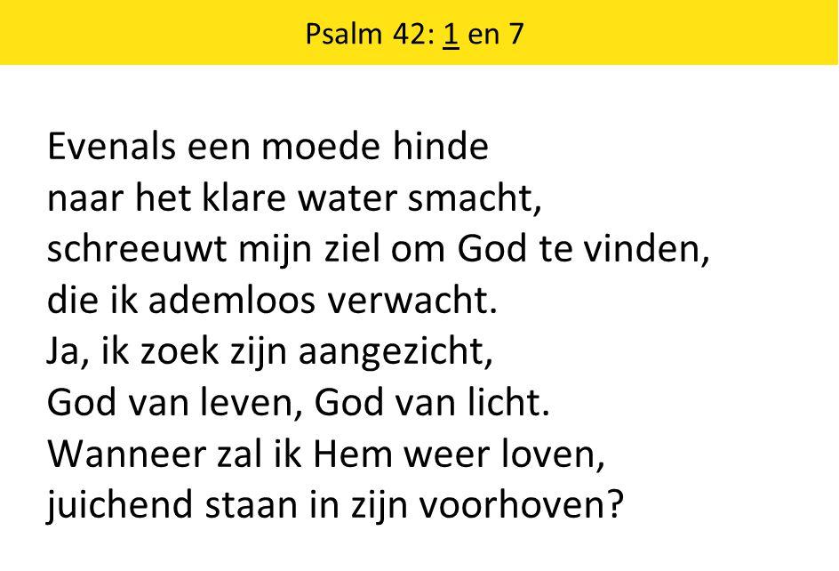 Psalm 42: 1 en 7 Evenals een moede hinde naar het klare water smacht, schreeuwt mijn ziel om God te vinden, die ik ademloos verwacht.