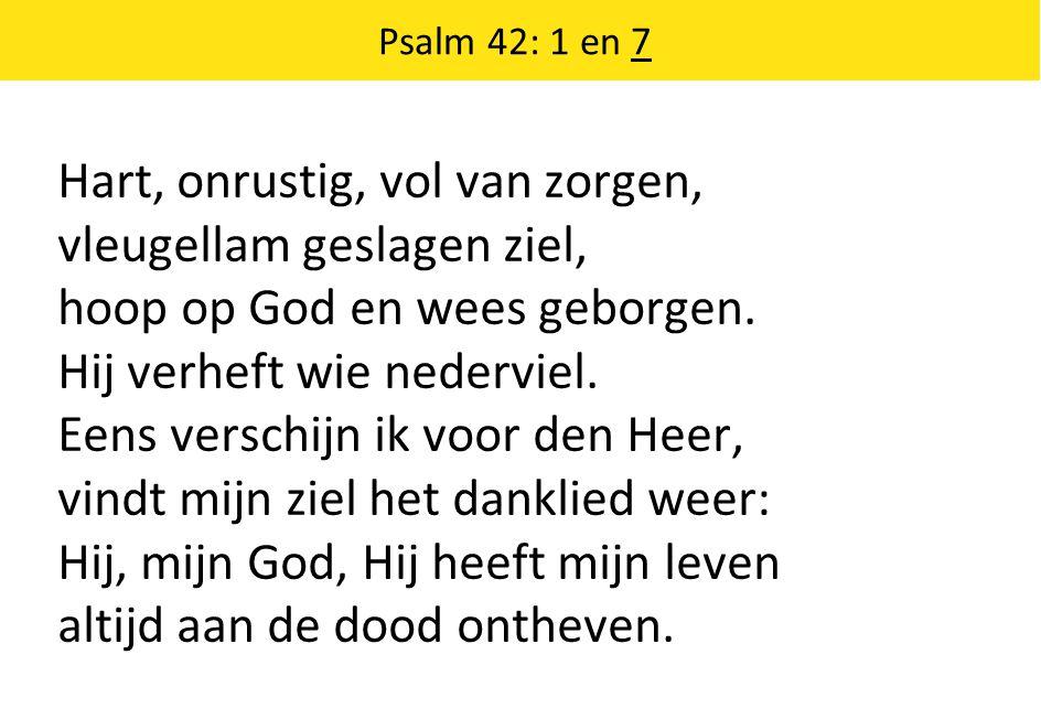 Psalm 42: 1 en 7 Hart, onrustig, vol van zorgen, vleugellam geslagen ziel, hoop op God en wees geborgen.
