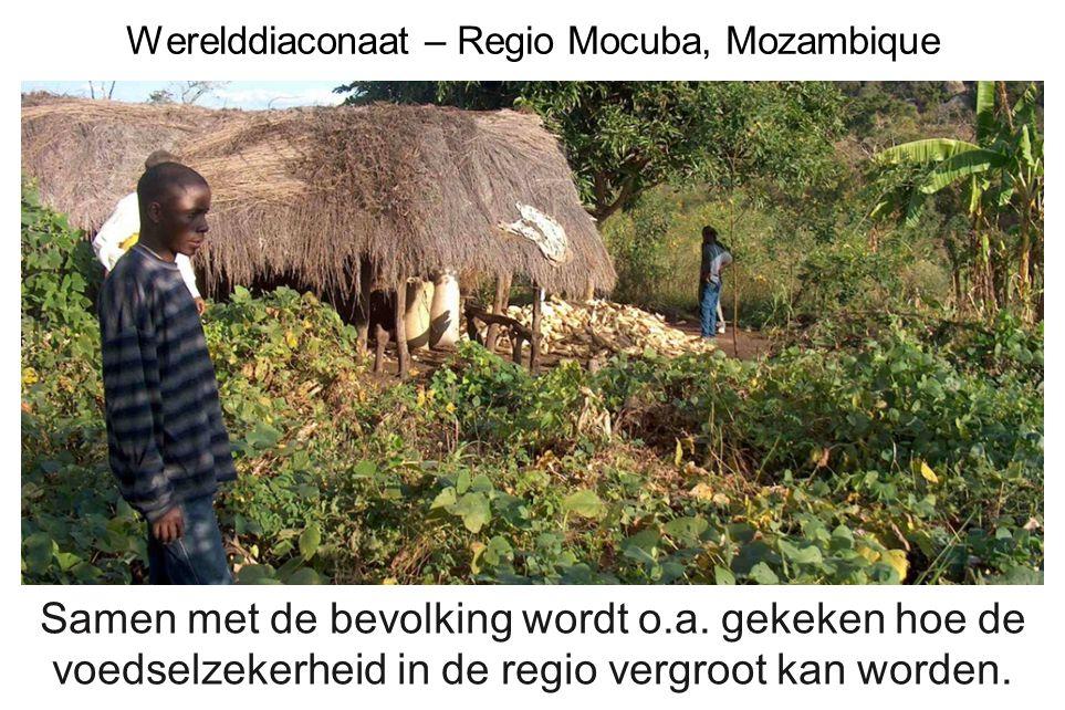 Werelddiaconaat – Regio Mocuba, Mozambique Samen met de bevolking wordt o.a. gekeken hoe de voedselzekerheid in de regio vergroot kan worden.