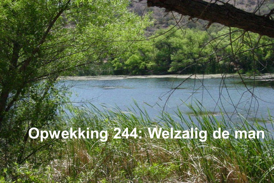 Opwekking 244: Welzalig de man