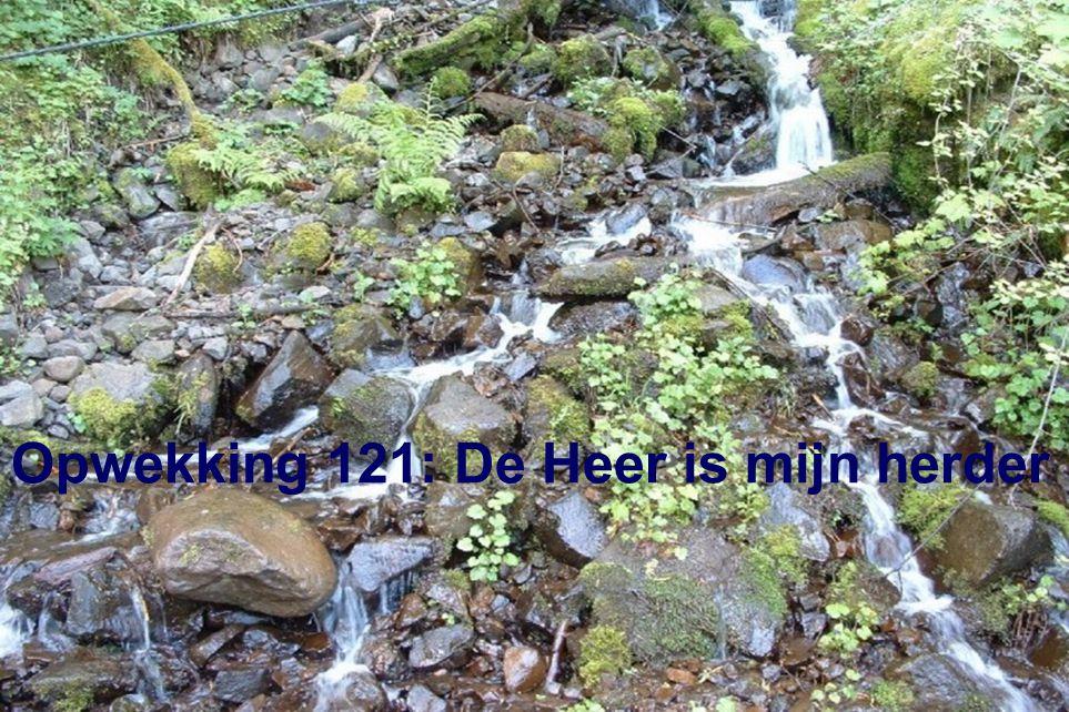 Opwekking 121: De Heer is mijn herder