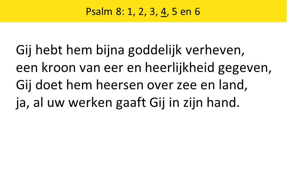 Gij hebt hem bijna goddelijk verheven, een kroon van eer en heerlijkheid gegeven, Gij doet hem heersen over zee en land, ja, al uw werken gaaft Gij in zijn hand.