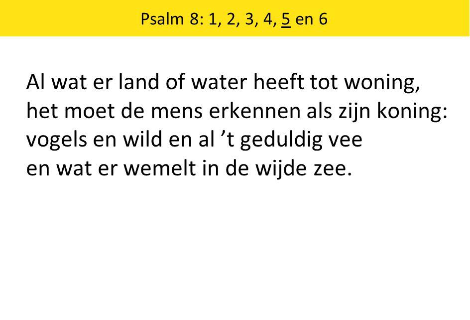 Al wat er land of water heeft tot woning, het moet de mens erkennen als zijn koning: vogels en wild en al 't geduldig vee en wat er wemelt in de wijde zee.