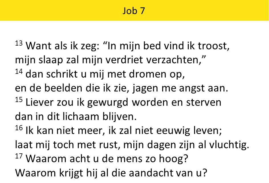 Job 7 13 Want als ik zeg: In mijn bed vind ik troost, mijn slaap zal mijn verdriet verzachten, 14 dan schrikt u mij met dromen op, en de beelden die ik zie, jagen me angst aan.
