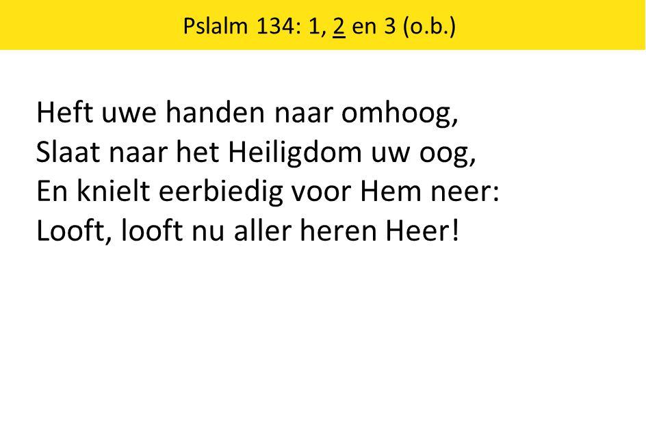 Heft uwe handen naar omhoog, Slaat naar het Heiligdom uw oog, En knielt eerbiedig voor Hem neer: Looft, looft nu aller heren Heer.