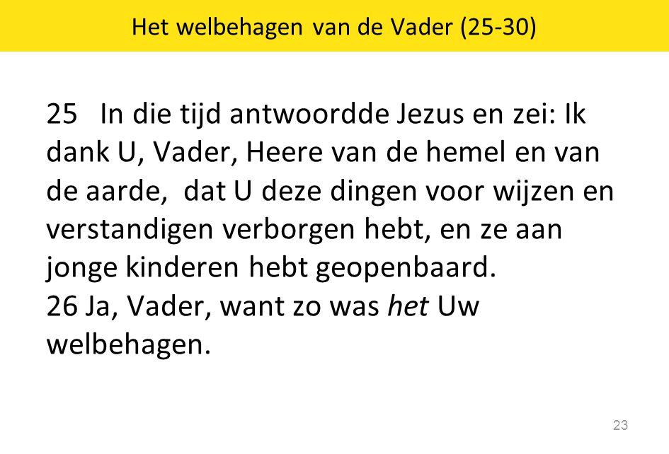 25 In die tijd antwoordde Jezus en zei: Ik dank U, Vader, Heere van de hemel en van de aarde, dat U deze dingen voor wijzen en verstandigen verborgen hebt, en ze aan jonge kinderen hebt geopenbaard.