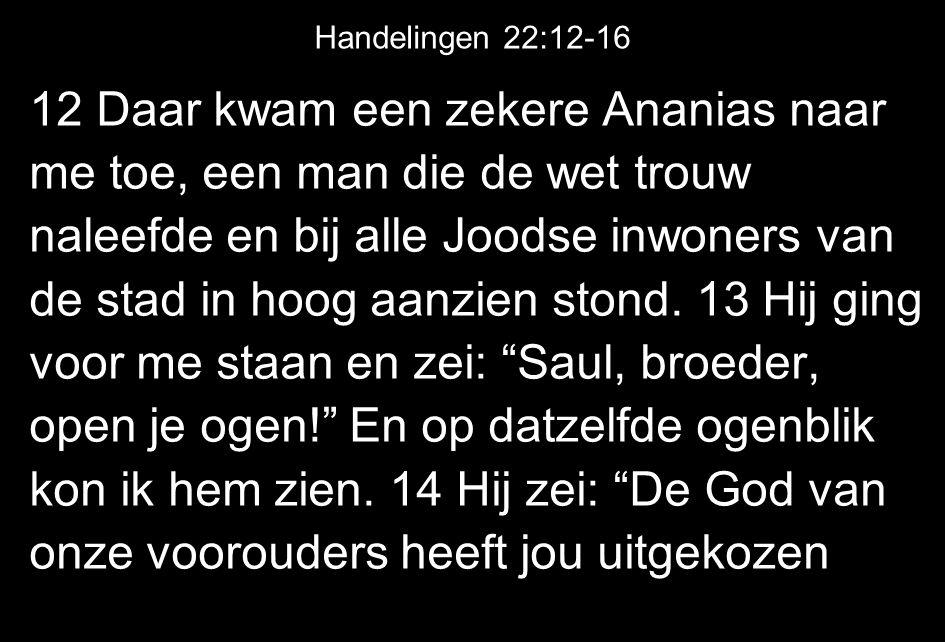 12 Daar kwam een zekere Ananias naar me toe, een man die de wet trouw naleefde en bij alle Joodse inwoners van de stad in hoog aanzien stond. 13 Hij g