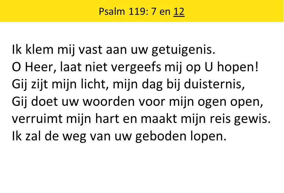 Ik klem mij vast aan uw getuigenis. O Heer, laat niet vergeefs mij op U hopen.
