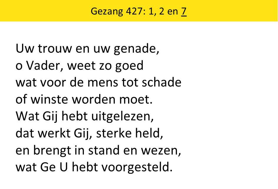 Gezang 427: 1, 2 en 7 Uw trouw en uw genade, o Vader, weet zo goed wat voor de mens tot schade of winste worden moet.
