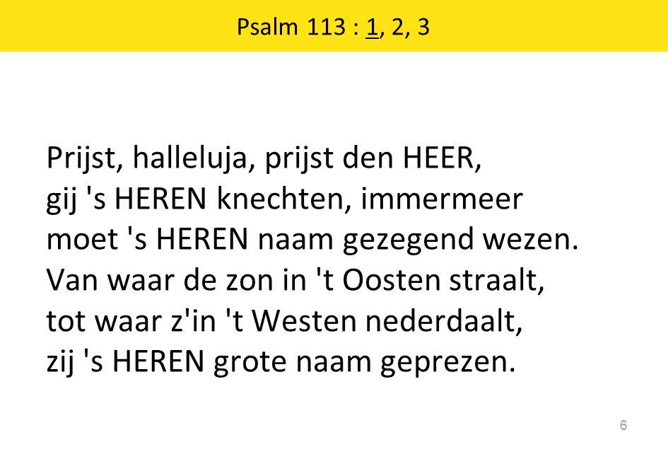 Prijst, halleluja, prijst den HEER, gij s HEREN knechten, immermeer moet s HEREN naam gezegend wezen.