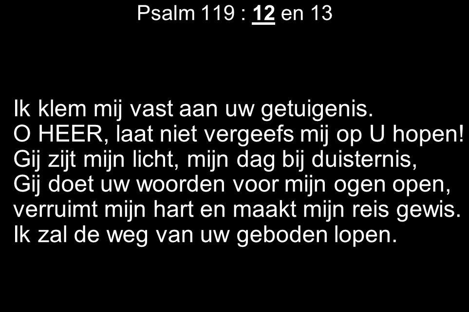 Psalm 119 : 12 en 13 Ik klem mij vast aan uw getuigenis. O HEER, laat niet vergeefs mij op U hopen! Gij zijt mijn licht, mijn dag bij duisternis, Gij
