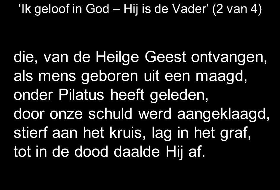 'Ik geloof in God – Hij is de Vader' (2 van 4) die, van de Heilge Geest ontvangen, als mens geboren uit een maagd, onder Pilatus heeft geleden, door onze schuld werd aangeklaagd, stierf aan het kruis, lag in het graf, tot in de dood daalde Hij af.