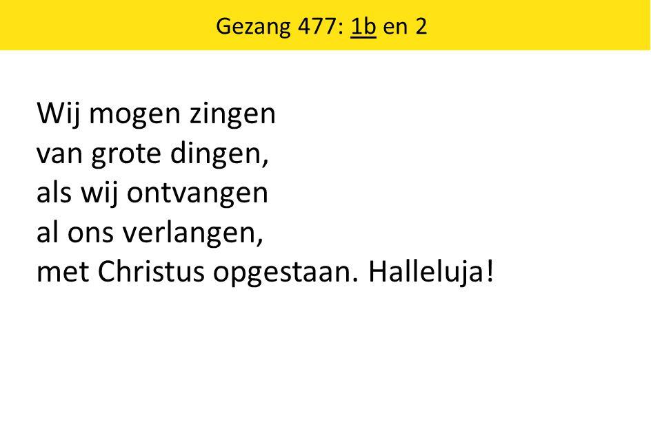 Wij mogen zingen van grote dingen, als wij ontvangen al ons verlangen, met Christus opgestaan. Halleluja! Gezang 477: 1b en 2
