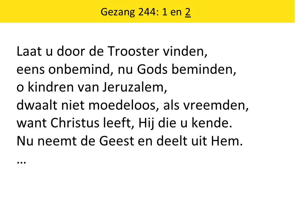Laat u door de Trooster vinden, eens onbemind, nu Gods beminden, o kindren van Jeruzalem, dwaalt niet moedeloos, als vreemden, want Christus leeft, Hij die u kende.