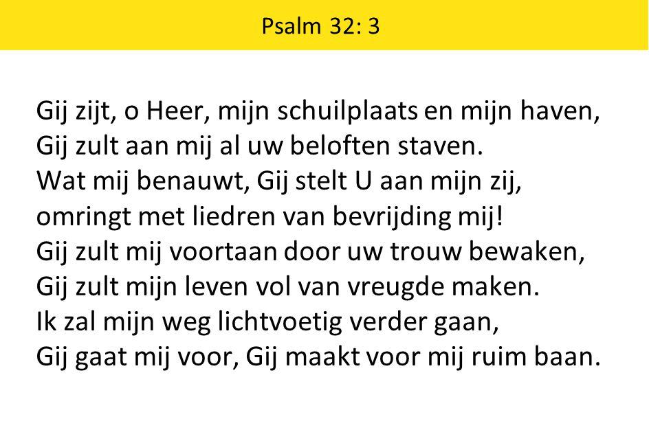 Gij zijt, o Heer, mijn schuilplaats en mijn haven, Gij zult aan mij al uw beloften staven.