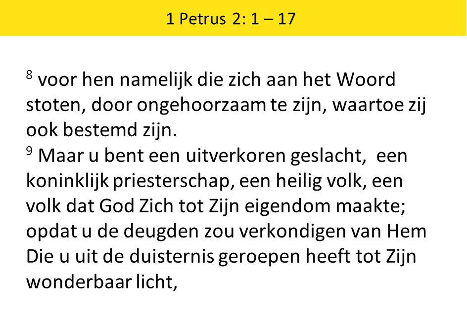 1 Petrus 2: 1 – 17 8 voor hen namelijk die zich aan het Woord stoten, door ongehoorzaam te zijn, waartoe zij ook bestemd zijn. 9 Maar u bent een uitve