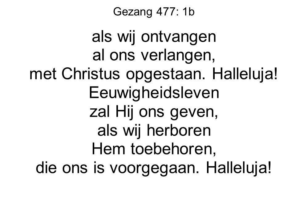 Gezang 477: 1b als wij ontvangen al ons verlangen, met Christus opgestaan. Halleluja! Eeuwigheidsleven zal Hij ons geven, als wij herboren Hem toebeho