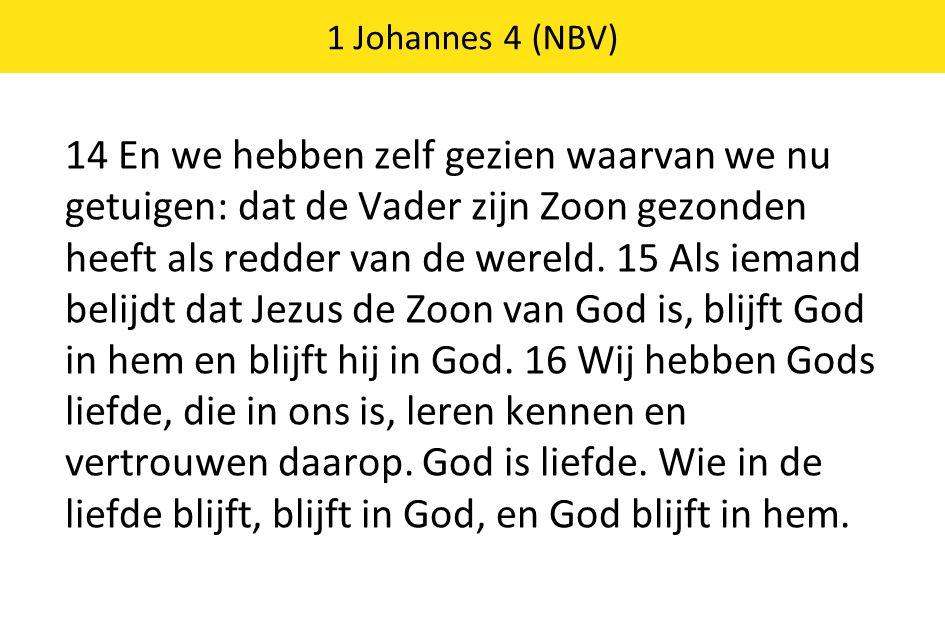 14 En we hebben zelf gezien waarvan we nu getuigen: dat de Vader zijn Zoon gezonden heeft als redder van de wereld. 15 Als iemand belijdt dat Jezus de