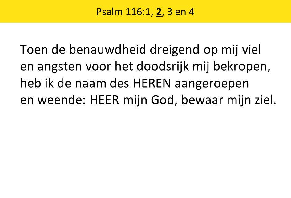 Psalm 116:1, 2, 3 en 4 Toen de benauwdheid dreigend op mij viel en angsten voor het doodsrijk mij bekropen, heb ik de naam des HEREN aangeroepen en we