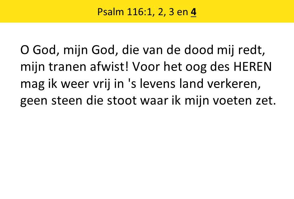 Psalm 116:1, 2, 3 en 4 O God, mijn God, die van de dood mij redt, mijn tranen afwist! Voor het oog des HEREN mag ik weer vrij in 's levens land verker