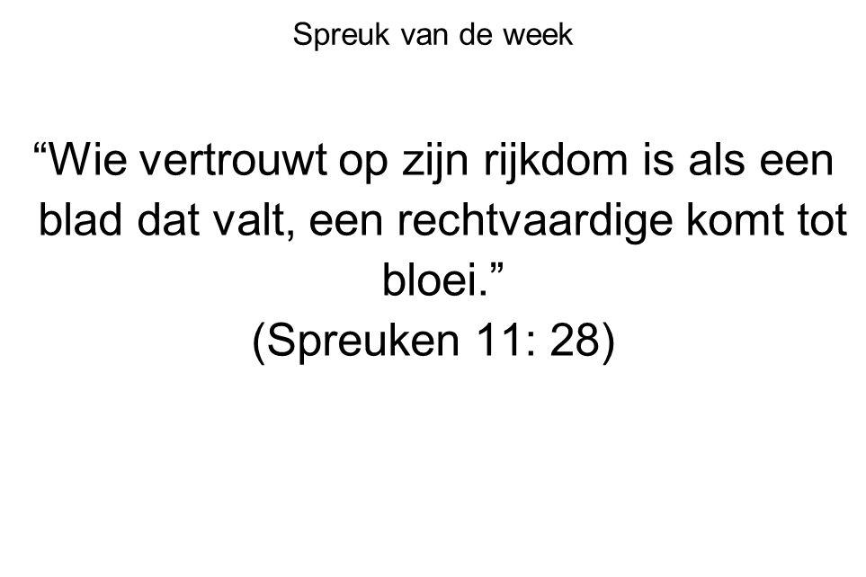 """Spreuk van de week """"Wie vertrouwt op zijn rijkdom is als een blad dat valt, een rechtvaardige komt tot bloei."""" (Spreuken 11: 28)"""