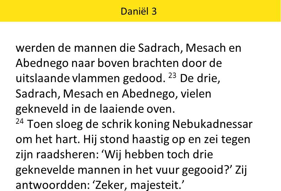 Daniël 3 25 Hij vervolgde: 'Maar ik zie vier mannen vrij rondlopen in het vuur.