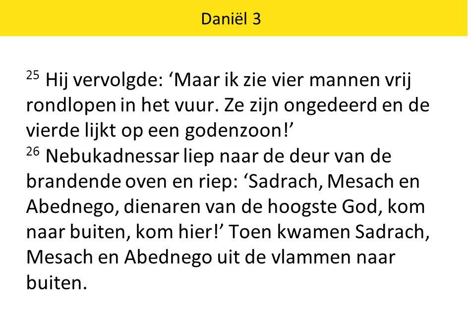 Daniël 3 27 De satrapen, stadhouders, gouverneurs en raadsheren van de koning drongen naar voren.