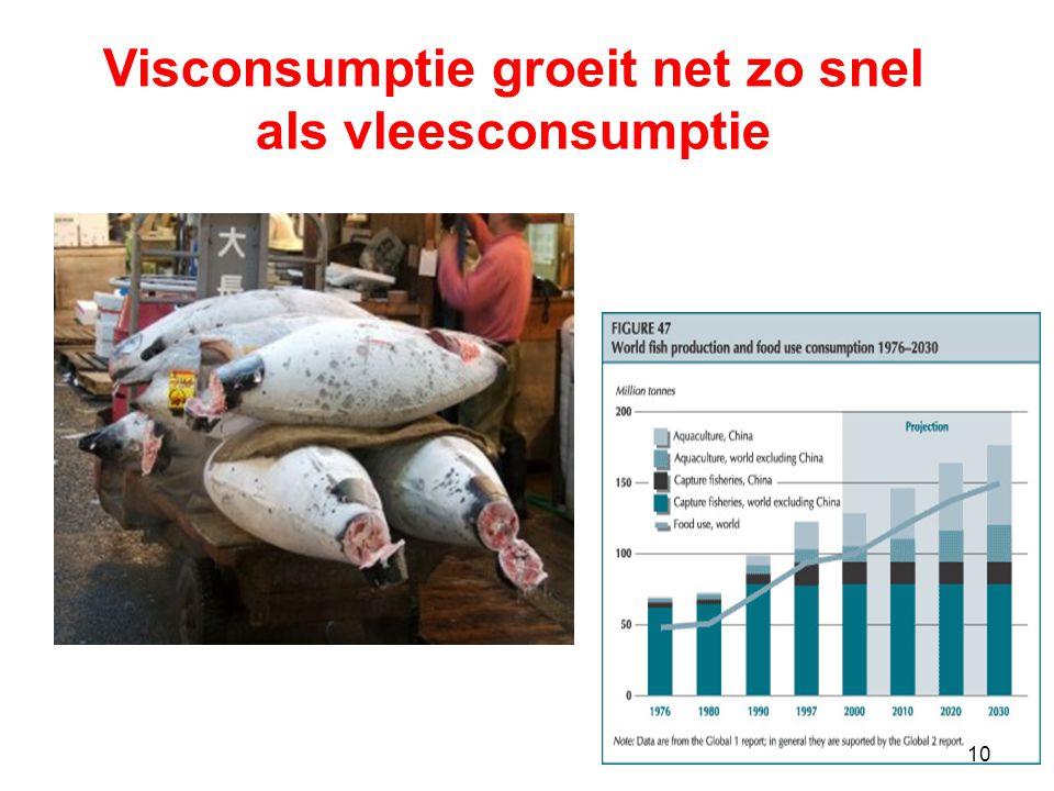 10 Visconsumptie groeit net zo snel als vleesconsumptie