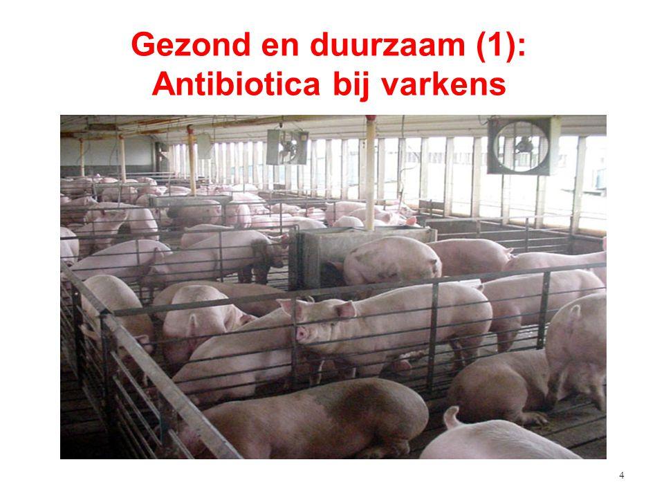 4 Gezond en duurzaam (1): Antibiotica bij varkens