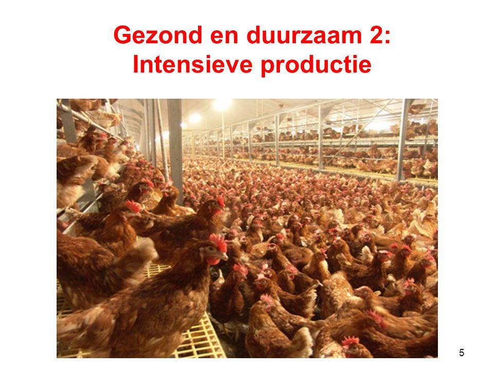 5 Gezond en duurzaam 2: Intensieve productie