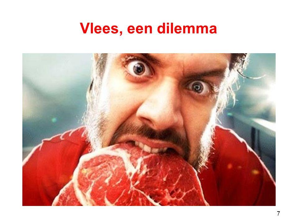 7 Vlees, een dilemma